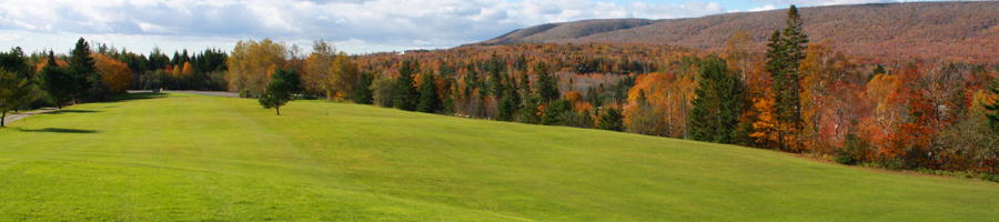 Beautiful Baddeck Forks Golf